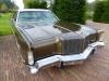 dutch-chrysler-classic-cars-meeting-2011_057