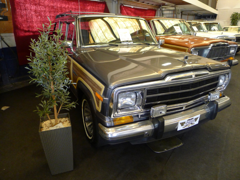 dutch-chrysler-usa-classic-cars-meeting-2012-136