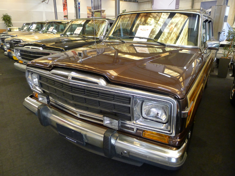 dutch-chrysler-usa-classic-cars-meeting-2012-144